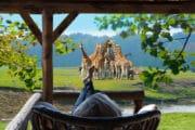 Zicht op het wild en giraffes vanaf je terras bij het vakantiehuis