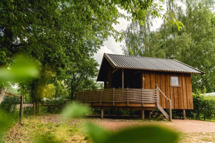 Houten cottage verstopt in het groen