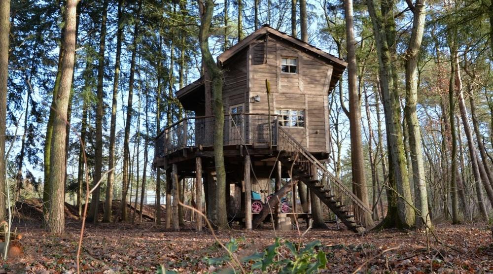 Luxe boomhut in een bos