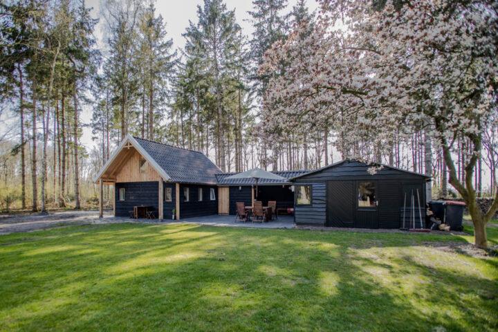 Een vakantiehuisje in het bos in Rheezerveen