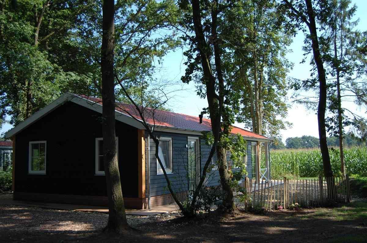 Huisje in het bos in Ruurlo in de Achterhoek