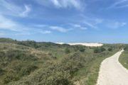 Geniet van de duinen bij Landal Berger Duinen in Schoorl